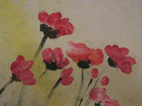 Klatschmohn 7 Blüten